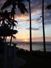 椰子と夕陽(2)